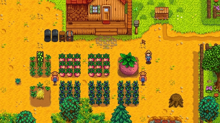 Best Stardew Valley Skills Guide Bright Rock Media